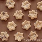あずきクッキー(犬用クッキー)