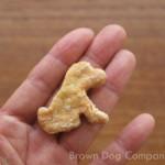 プレーンクッキー(犬用クッキー)の大きさ
